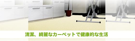 清潔、綺麗なカーペットで健康的な生活